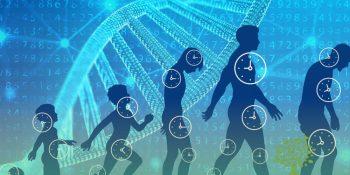 O que é Envelhecer Biologicamente?