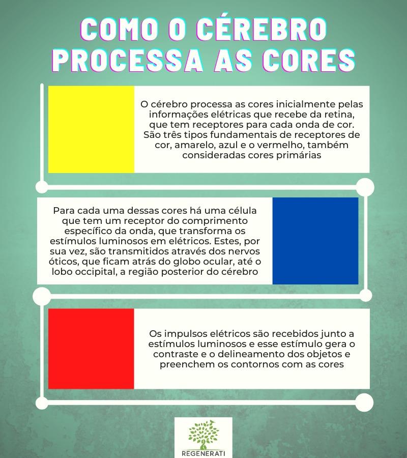Como o Cérebro Processa Cores